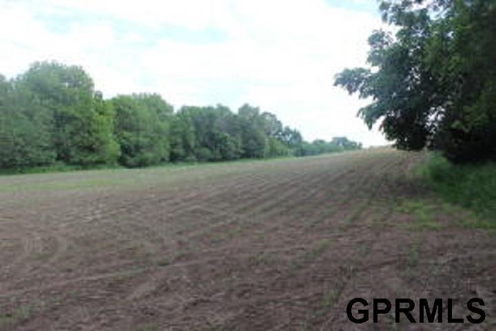 Farms/Ranches - Missouri Valley, IA