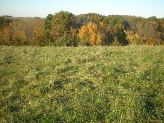 Land - GLENWOOD, IA (photo 4)
