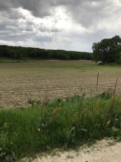 Land - MONDAMIN, IA (photo 2)