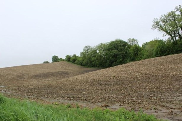 Land - HONEY CREEK, IA (photo 5)