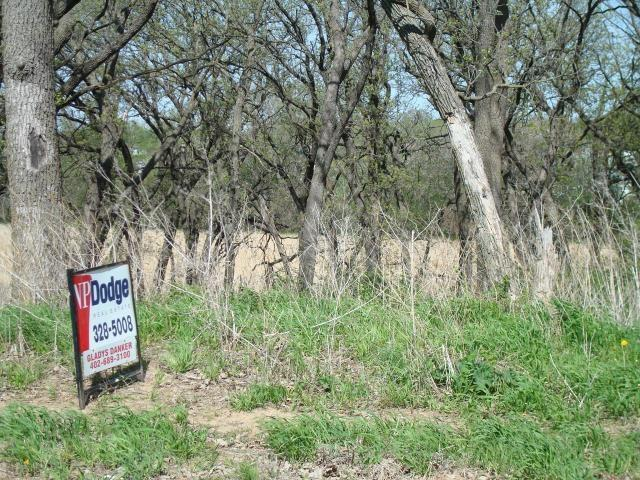 Land - CARSON, IA (photo 1)