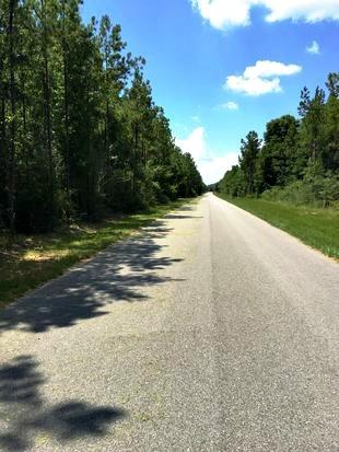 LAND/ACREAGE - PACE, FL (photo 2)