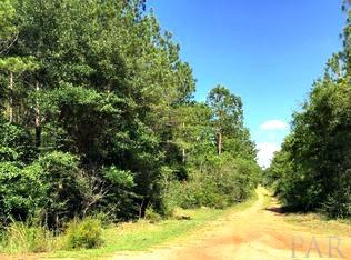 LAND/ACREAGE - PACE, FL (photo 4)