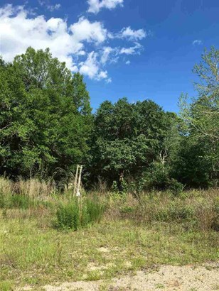 RESIDENTIAL LOTS - PACE, FL (photo 2)