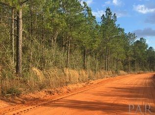 RESIDENTIAL LOTS - CHUMUCKLA, FL (photo 2)