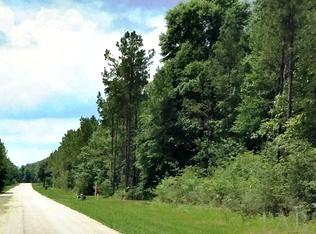 RESIDENTIAL LOTS - PACE, FL (photo 3)