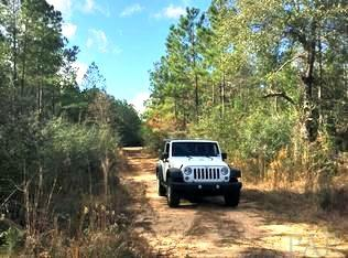 RESIDENTIAL LOTS - PACE, FL (photo 5)