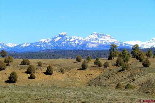 Residential - Pagosa Springs, CO