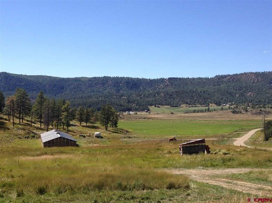 Residential - Hesperus, CO (photo 5)