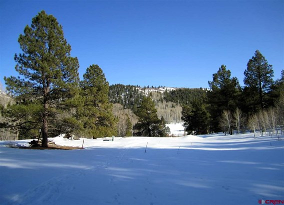 Residential - Pagosa Springs, CO (photo 5)