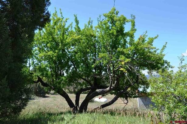 Stick Built - Ignacio, CO (photo 2)