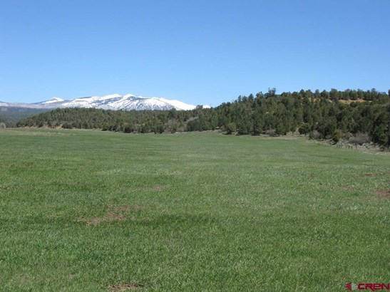 Agricultural - Hesperus, CO (photo 2)