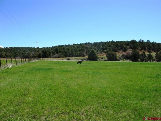 Agricultural - Hesperus, CO (photo 3)
