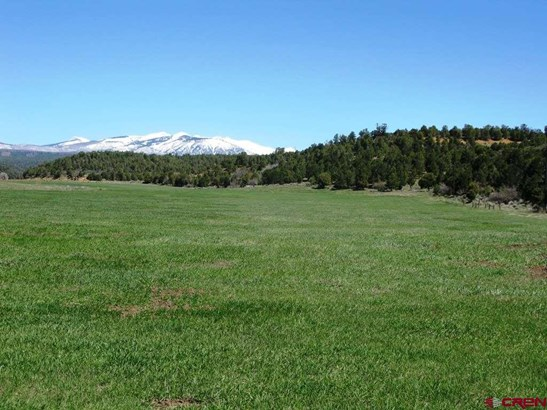 Agricultural - Hesperus, CO (photo 5)