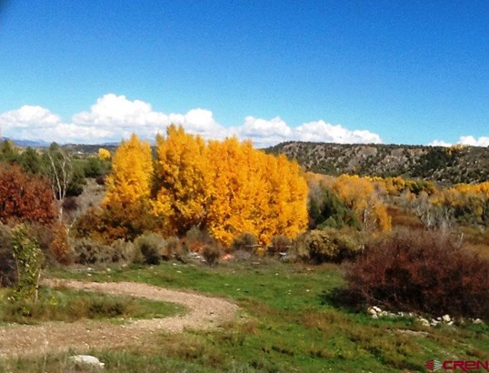 Stick Built - Durango, CO (photo 4)