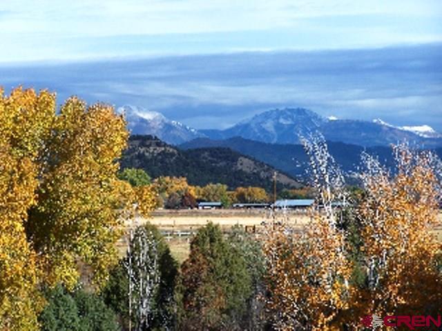 Stick Built - Durango, CO (photo 5)