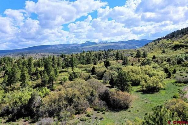 Residential - Mancos, CO