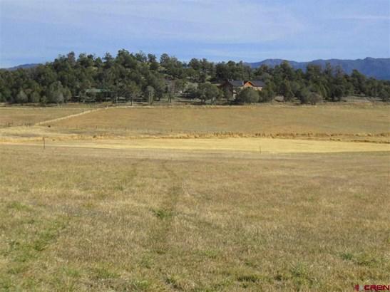 Residential - Ignacio, CO (photo 5)