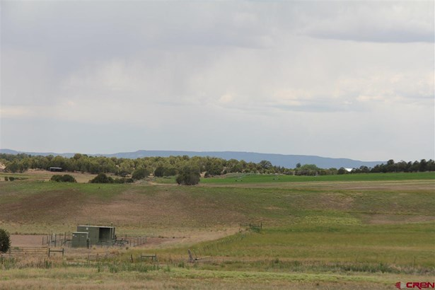 Residential - Oxford, CO (photo 4)