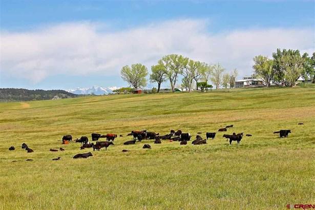 With Residence, Ranch,Farm House,Cabin - Ignacio, CO (photo 1)