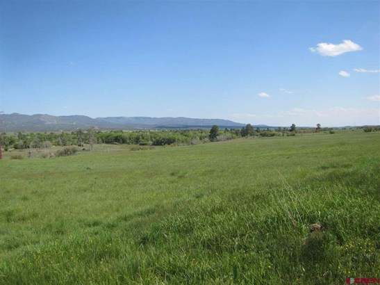 Residential - Bayfield, CO (photo 4)