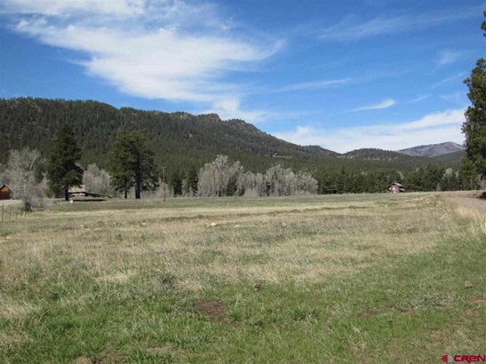 Residential - Bayfield, CO (photo 2)