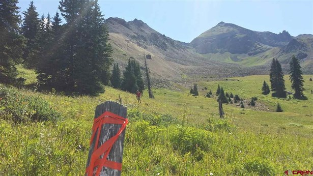 Mountain Property - Silverton, CO (photo 1)