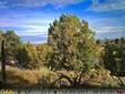Residential - Hesperus, CO (photo 1)