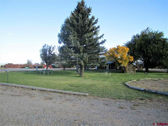 Agricultural - Bayfield, CO (photo 3)