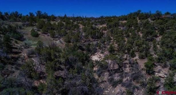 No Residence - Dove Creek, CO (photo 3)