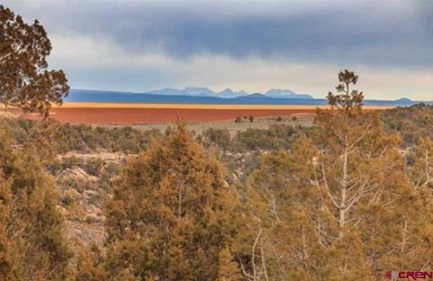 No Residence - Dove Creek, CO (photo 4)