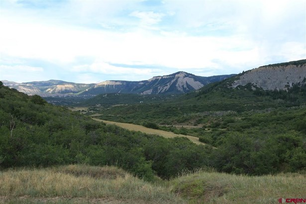 Residential - Dolores, CO (photo 1)