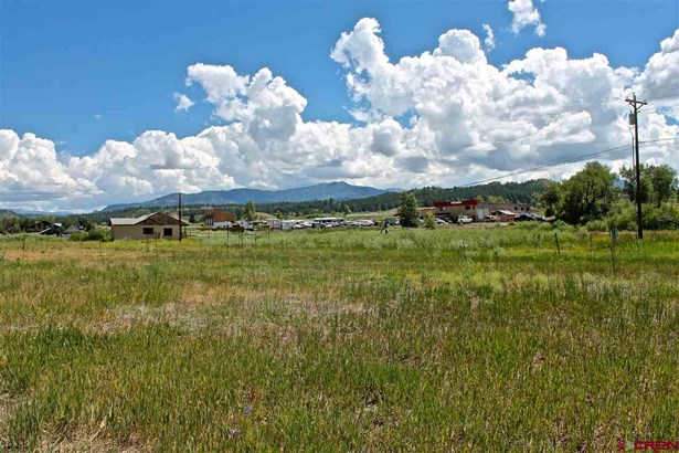 Residential - Pagosa Springs, CO (photo 3)