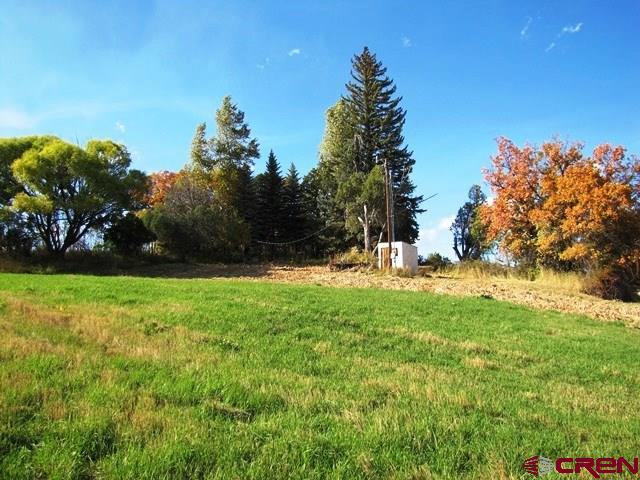 Residential - Bayfield, CO (photo 5)