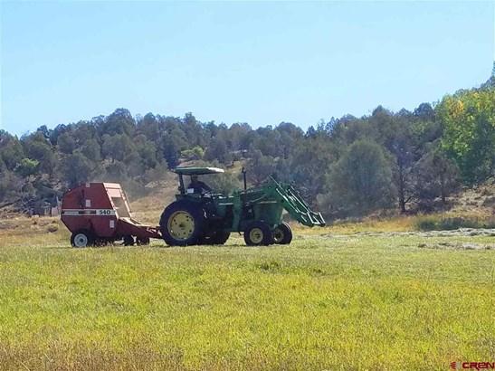 Agricultural - Durango, CO (photo 3)