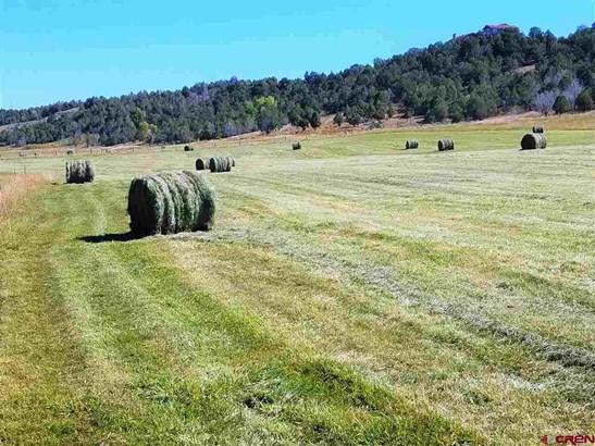 Agricultural - Durango, CO (photo 5)