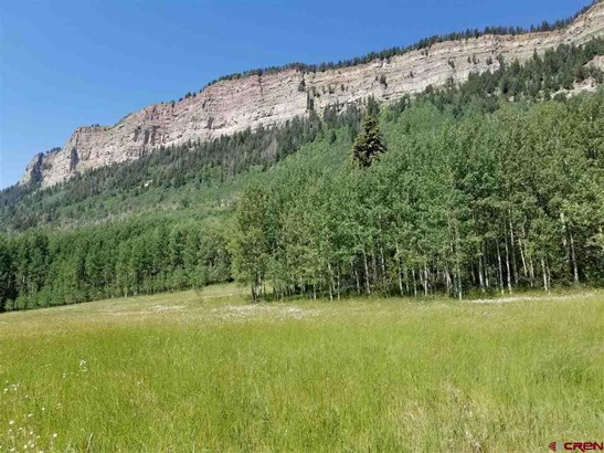 Mountain Property - Durango, CO (photo 5)