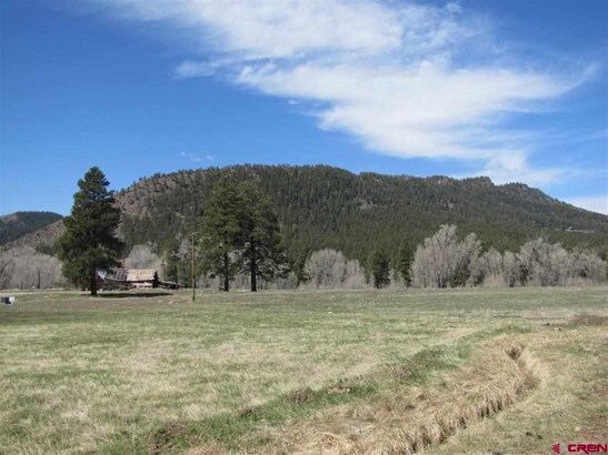 Residential - Bayfield, CO (photo 3)