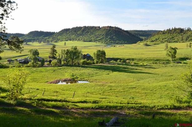 Farm House, With Residence - Pagosa Springs, CO