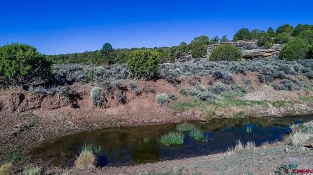 Residential - Dove Creek, CO (photo 3)