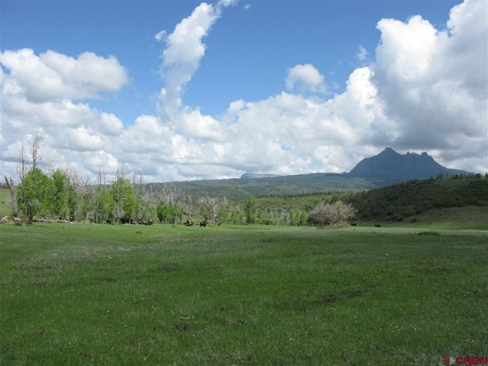 Agricultural - Pagosa Springs, CO (photo 2)