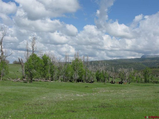 Agricultural - Pagosa Springs, CO (photo 3)
