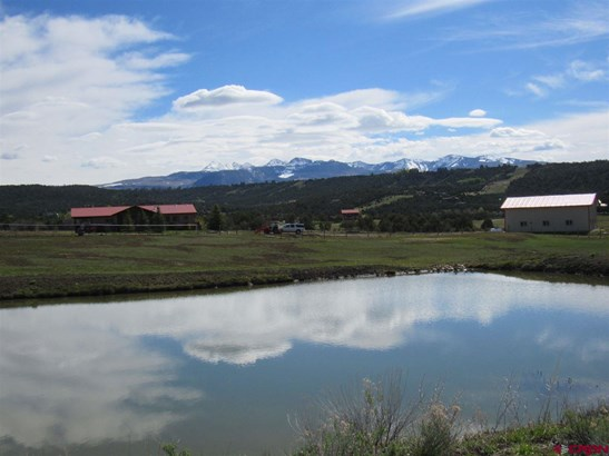 Raised Ranch, With Residence - Mancos, CO (photo 1)