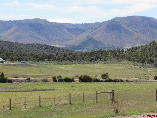 Raised Ranch, With Residence - Mancos, CO (photo 3)