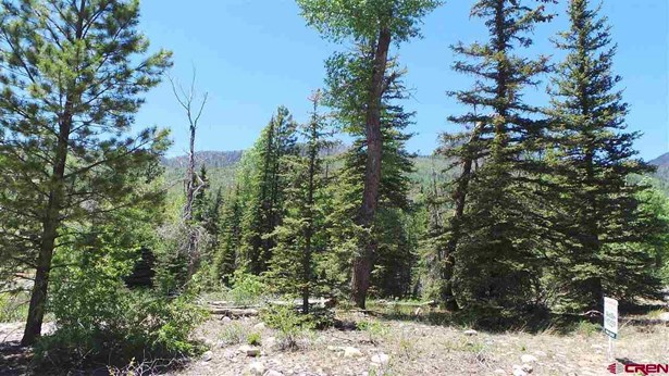 Residential - Vallecito Lake/Bayfield, CO