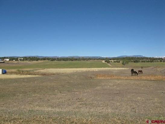 Residential - Ignacio, CO (photo 3)