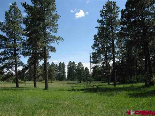 Mountain Property - Mancos, CO (photo 1)