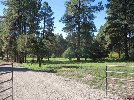 Mountain Property - Mancos, CO (photo 2)