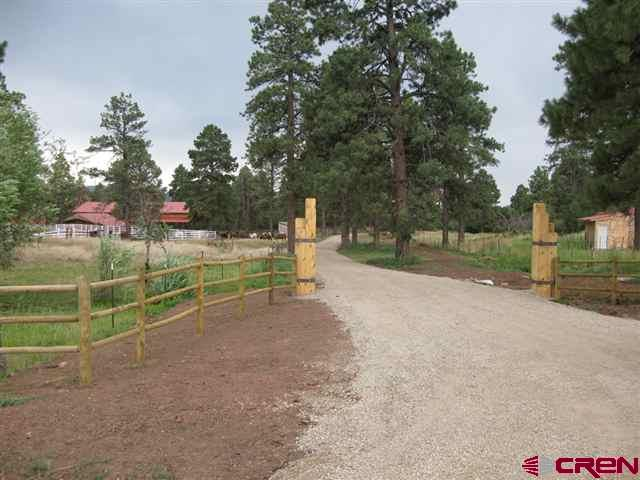 Mountain Property - Mancos, CO (photo 3)