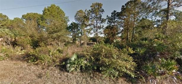 319 Selkirk St, Lehigh Acres, FL - USA (photo 1)